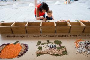 slowfood_terramadre_salonedelgusto_torino-seeds-play
